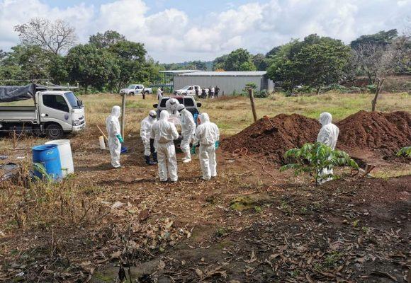 Empleados de la Alcaldía de Juayua temerosos ante incremento de casos de COVID-19 en la Comun