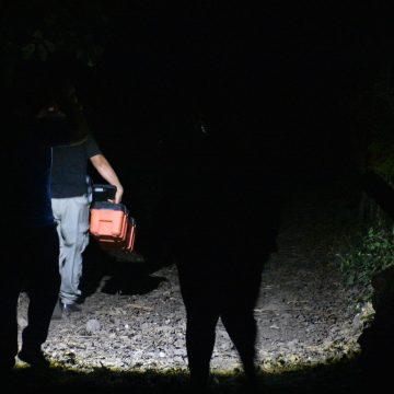 Asesinan a dos hermanos en Usulután