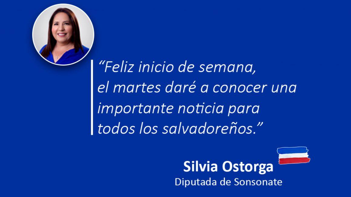 """Silvia Ostorga anunció que presentará una """"importante iniciativa de Ley"""""""