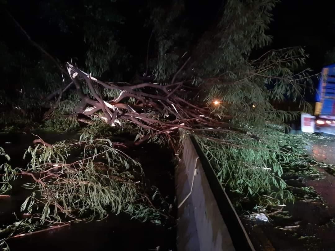 Sonsonate sufrió estragos por fuerte tormenta de anoche